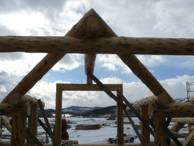 Dormer purlins and Valley trim logs