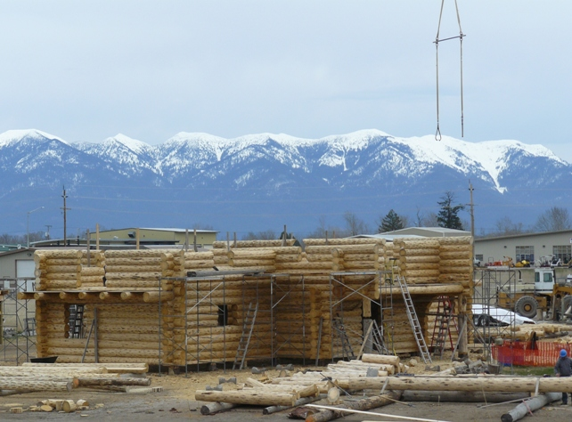 Second story log walls growing!