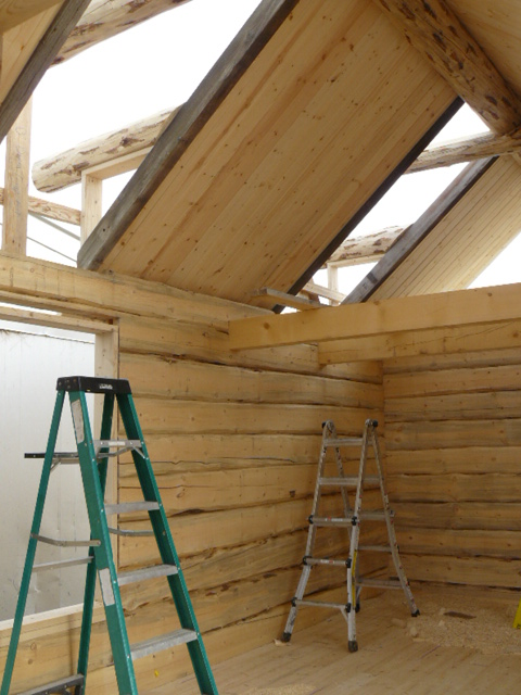 Loft beams and dormer trim beams