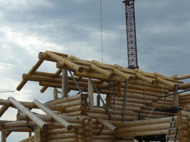 log rafter with infill logs