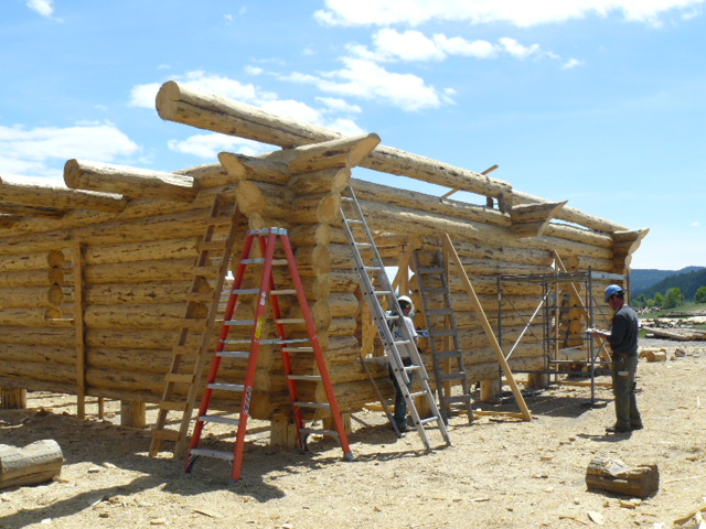Prepping a plate log - walls completed on this beautiful log home!